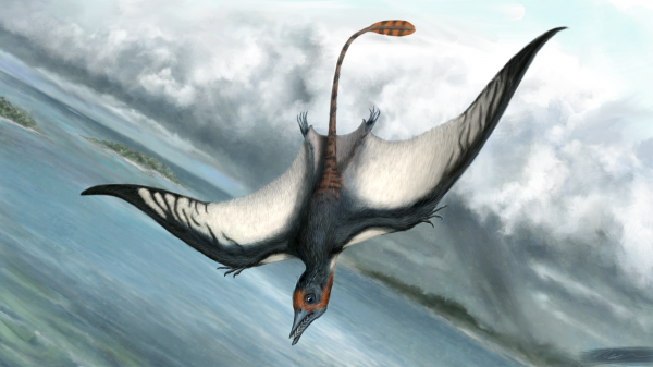 Reconstruction of Fodonyx spenceri by Andrea Cobbett (used with permission).